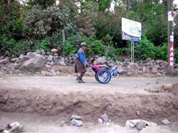 Man strolling with wheelchair user.